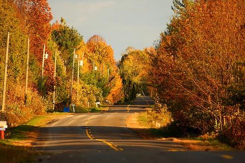 Ferie d'autunno